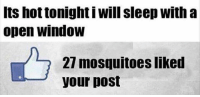 Dank, Sleep, and 🤖: Its hot tonight i will sleep with a  open window  27 mosquitoes liked  your pos