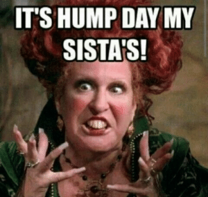 Hump Day, Memes, and Pinterest: IT'S HUMP DAY MY  SISTA'S! Hump Day Coffee Memes   morning   Pinterest   Wednesday coffee ...
