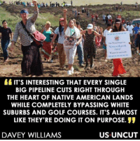 Memes, Native American, and American: IT'S INTERESTING THAT EVERY SINGLE  BIG PIPELINE CUTS RIGHT THROUGH  THE HEART OF NATIVE AMERICAN LANDS  WHILE COMPLETELY BYPASSING WHITE  SUBURBS AND GOLF COURSES. IT'S ALMOST  LIKE THEY'RE DOING IT ON PURPOSE.  DAVEY WILLIAMS  US UNCUT Image from US Uncut