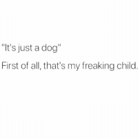 """It's just a dog  First of all, that's my freaking child My child my everything my life tbh @mybestiesays"