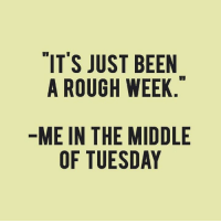 Memes, The Middle, and Rough: IT'S JUST BEEN  A ROUGH WEEK  ME IN THE MIDDLE  OF TUESDAY <A>