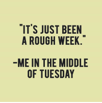 Memes, The Middle, and Rough: IT'S JUST BEEN  A ROUGH WEEK  ME IN THE MIDDLE  OF TUESDAY
