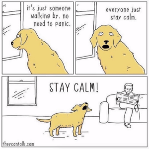 Instagram, Target, and Blank: it's just someone  walking by. no  need to panic.  everyone just  stay calm.  STAY CALM!  theycantalk.com  ,. It all makes so much senseVia @theycantalkcomics