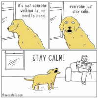 NOBODY FUCKING PANIC, JUST CALM THE FUCK DOWN JANIS. °° ° ° ° ° ° ° ° ° ° ° ° life truth dogs dogsofinstgram cats catsordogs bark staycalm dontpanic doggo moonmoon mailman question behavior bowbow wolf stevecarell meme pepe truestory firstworldproblems comics webcomic comicstrip reddit shitjustgotreal dontyoudare bitchplease gameofthrones ° ° ° Created by @theycantalkcomics: it's just someone  walking by. no  need to panic  STAY CALM!  they cant alk.com  everyone just  stay calm. NOBODY FUCKING PANIC, JUST CALM THE FUCK DOWN JANIS. °° ° ° ° ° ° ° ° ° ° ° ° life truth dogs dogsofinstgram cats catsordogs bark staycalm dontpanic doggo moonmoon mailman question behavior bowbow wolf stevecarell meme pepe truestory firstworldproblems comics webcomic comicstrip reddit shitjustgotreal dontyoudare bitchplease gameofthrones ° ° ° Created by @theycantalkcomics