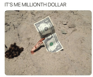 It's Me, Me-Millionth-Dollar, and Dollar: IT'S ME MILLIONTH DOLLAR