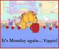 Good Morning!: It's Monday again... Yippie! Good Morning!