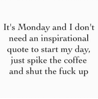 It's Monday and I don't  need an inspirational  quote to start my day,  just spike the coffee  and shut the fuck up Monday vibes. 👊🏻🍸