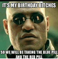 I heard you see dragons and fairies when you do. I'll be MIA all day, just woke up. ufc mma bellator wsof fight jj jiujitsu muaythai wrestling boxing kickboxing grappling funnymma ufcmeme mmamemes onefc motivation quotes warrior: IT'S MY BIRTHDAY BITCHES  SO WE WILL BE TAKING THE BLUE PILL  AND THE RED PILL I heard you see dragons and fairies when you do. I'll be MIA all day, just woke up. ufc mma bellator wsof fight jj jiujitsu muaythai wrestling boxing kickboxing grappling funnymma ufcmeme mmamemes onefc motivation quotes warrior