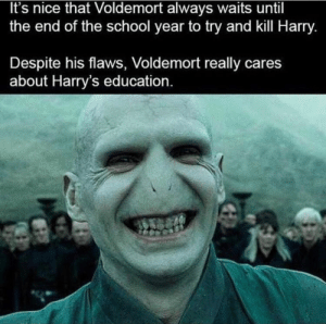 School, Nice, and Voldemort: It's nice that Voldemort always waits until  the end of the school year to try and kill Harry.  Despite his flaws, Voldemort really cares  about Harry's education WHAT A GREAT GUY