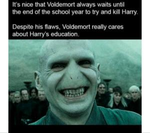 Voldemort was the real mvp: It's nice that Voldemort always waits until  the end of the school year to try and kill Harry.  Despite his flaws, Voldemort really cares  about Harry's education. Voldemort was the real mvp