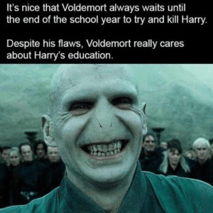 its nice that: It's nice that Voldemort always waits until  the end of the school year to try and kill Harry.  Despite his flaws, Voldemort really cares  about Harry's education.