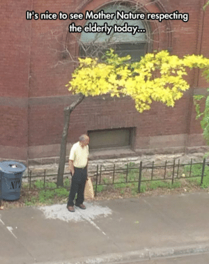 lolzandtrollz:  Mother Nature Being Respectful: Its nice to see Mother Nature respecting  the elderly today.co  NT lolzandtrollz:  Mother Nature Being Respectful