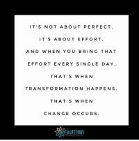 Friday, Memes, and Transformers: IT'S NOT ABOUT PERFECT  IT'S ABOUT EFFORT  AND WHEN YOU BRING THAT  EFFORT EVER Y SIN GLE DA Y  THAT'S WHEN  TRANSFORMATION HAPPENS  THAT' S W H E N  CHANGE OCCUR S  ORGANIZED MUSIC Friday Motivation 🌻 fruitiontips vocaltraining vocalcoach vocallessons perfectingmycraft