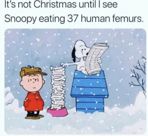 me irl: It's not Christmas until I see  Snoopy eating 37 human femurs. me irl