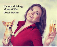 Being Alone Dogs And Drinking It S Not If The Dog Home