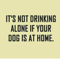 Drinking Memes And It S Not Alone If Your Dog Is At Home