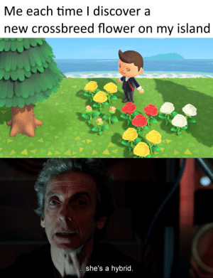 It's not funny to stay four and a half billion years in a dial for fricking flowers: It's not funny to stay four and a half billion years in a dial for fricking flowers