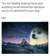 """Doge, Memes, and True: """"It's not healthy staying home and  avoiding social interaction because  you're too attached to your dog.  Me:  @chaos.reigns  ONLY DOGE CAN JUDGE ME only true believers will understand 🙏 thx for following @chaos.reigns_ 👈"""