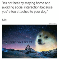 """Doge, Memes, and Home: """"It's not healthy staying home and  avoiding social interaction because  you're too attached to your dog.  Me:  @chaos.reigns  ONLY DOGE CAN JUDGE ME Same tho. literallythatsyou dogpeoplegetit Via @chaos.reigns_"""