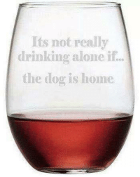 Dogs Drinking And Moms Its Not Really Alone If The Dog Is Home