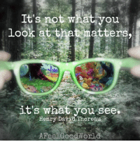 Memes, 🤖, and Thoreau: It's not what you  look at that matters,  it's what you see.  Henry David Thoreau  AFeel Good Worl Believe it and you will see it.   📷  @afeelgoodworld