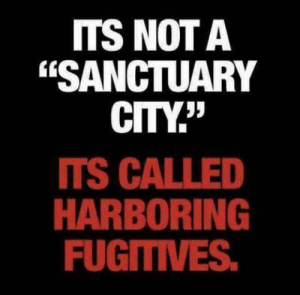 "Memes, Truth, and 🤖: ITS NOTA  ""SANCTUARY  CITY""  TS CALLED  HARBORING  FUGITIVES Truth!"