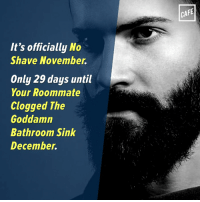 Then just a few weeks until Brush Your Teeth In The Kitchen January!: It's officially No  Shave November  Only 29 days until  Your Roommate  Clogged The  Goddamn  Bathroom Sink  December.  CAFE Then just a few weeks until Brush Your Teeth In The Kitchen January!
