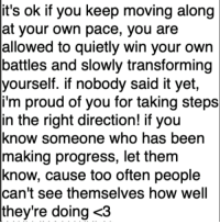 Making Progress: it's ok if you keep moving along  at your own pace, you are  allowed to quietly win your own  battles and slowly transforming  yourself. if nobody said it yet  i'm proud of you for taking steps  in the right direction! if you  know someone who has been  making progress, let them  know, cause too often people  can't see themselves how well  they're doing <3