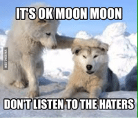 moon moon: ITS OK MOON MOON  DONT LISTEN TO THE HATERS