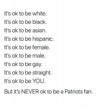 Nba, Patriotic, and Black: It's ok to be white  It's ok to be black  It's ok to be asiarn  It's ok to be hispanic  It's ok to be female  It's ok to be male  It's ok to be gay  It's ok to be straight.  It's ok to be YOU  But it's NEVER ok to be a Patriots fan 💯😭😂 SuperBowlSunday