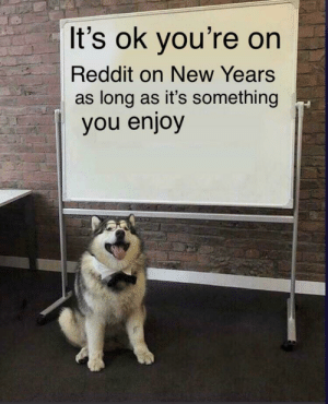 meirl: It's ok you're on  Reddit on New Years  as long as it's something  you enjoy meirl