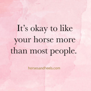 Horse, Okay, and Com: It's okay to like  your horse more  than most people.  horsesandheels.com It's okay to like your horse more than most people. #equestrianproblems