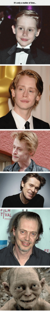 Macaulay Culkin, Evolution, and Time: It's only a matter of time...  T VAL <p>Macaulay Culkin Evolution.</p>