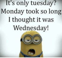 Wake the fuck up 😂: It's only tuesday?  Monday took so long  I thought it was  Wednesday! Wake the fuck up 😂