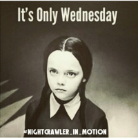 ~WHERE'S FRIDAY? 😃 funny hilarious funnymemes brilliant weedstagram 2a bacon divorce married beer liquor ufo: It's Only Wednesday  TNIGHTRAWLER-IN-MOTION ~WHERE'S FRIDAY? 😃 funny hilarious funnymemes brilliant weedstagram 2a bacon divorce married beer liquor ufo