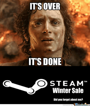 RMX] The Steam Summer Sale by recyclebin - Meme Center: IT'S OVER  ITS DONE  STEAM  Winter Sale  Did you forget about me?  TM RMX] The Steam Summer Sale by recyclebin - Meme Center