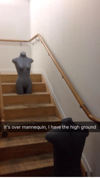 Mannequin, High, and Over: It's over mannequin, I have the high ground