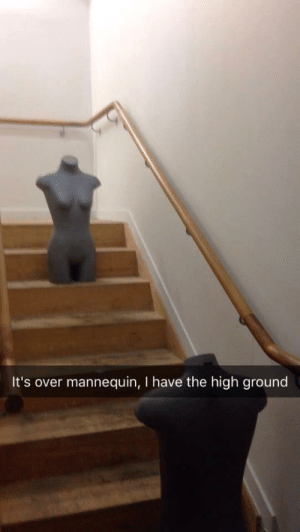 Mannequin, You, and I Hate You: It's over mannequin, I have the high ground I hate you