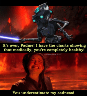 Children, Charts, and Sadness: It's over, Padme! I have the charts showing  that medically, you're completely healthyl  u/Cronenberg_C137  You underestimate my sadness! You were supposed to raise your children, not die in self-absorption! [OC, improved]