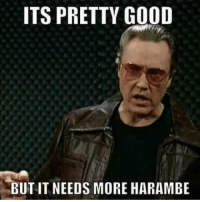 ITS PRETTY GOOD  BUT IT NEEDS MORE HARAMBE