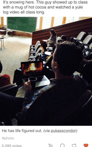 Life, Lpt, and Video: It's snowing here. This guy showed up to class  with a mug of hot cocoa and watched a yule  log video all class long.  He has life figured out. (via pukasscondor)  #photo  5.095 notes LPT: Sit behind this guy for more rad LPTs