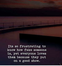 Fake, Good, and How: Its so frustrating to  know how fake someone  is, yet everyone loves  them because they put  on a good show.