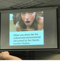 Fucking, Memes, and School: It's so fucking big.  When you show her the  cultural and environmental  risk posed by the Dakota  Access Pipeline What fucking school is this!? 😂😂😂🔥🔥🔥