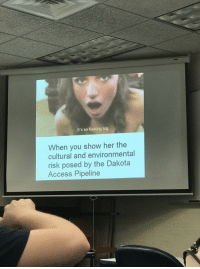 "Be Like, College, and Dank: It's so fucking big  When you show her the  cultural and environmental  risk posed by the Dakota  Access Pipeline <p>College presentations be like&hellip; (by keller500 ) via /r/dank_meme <a href=""http://ift.tt/2pxuRES"">http://ift.tt/2pxuRES</a></p>"