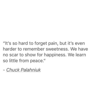 """scar: """"It's so hard to forget pain, but it's even  harder to remember sweetness. We have  no scar to show for happiness. We learn  so little from peace.""""  Chuck Palahniuk"""