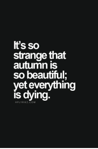 Beautiful, Com, and Autumn: It's so  strange that  autumn is  so beautiful;  yet everything  is dying  HPLYRIKZ.COM