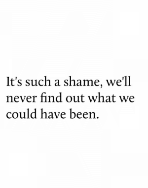 Never, Been, and Shame: It's such a shame, we'll  never find out what we  could have been