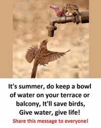 Be Like, Life, and Meme: It's summer, do keep a bowl  of water on your terrace or  balcony, It'll save birds,  Give water, give life!  Share this message to everyone! Twitter: BLB247 Snapchat : BELIKEBRO.COM belikebro sarcasm meme Follow @be.like.bro