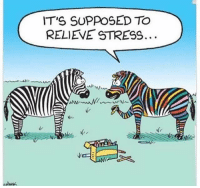 stress: IT'S SUPPOSED TO  RELIEVE STRESS.