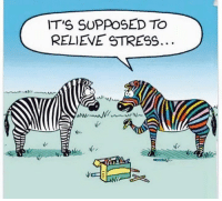 your daily dose of jokes: IT'S SUPPOSED TO  RELIEVE STRESS.  Ne your daily dose of jokes
